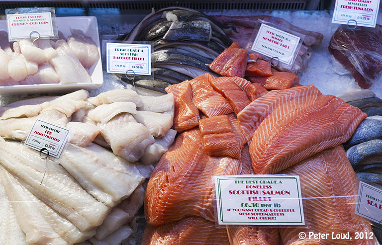 Photographs of newcastle by peter loud grainger market for Best fish market nyc